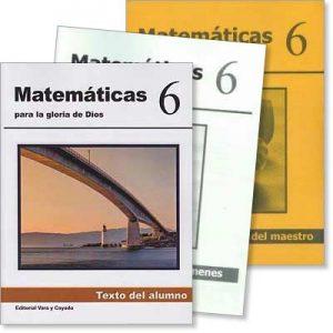 Matemáticas 6 Conjunto* (3 libros)
